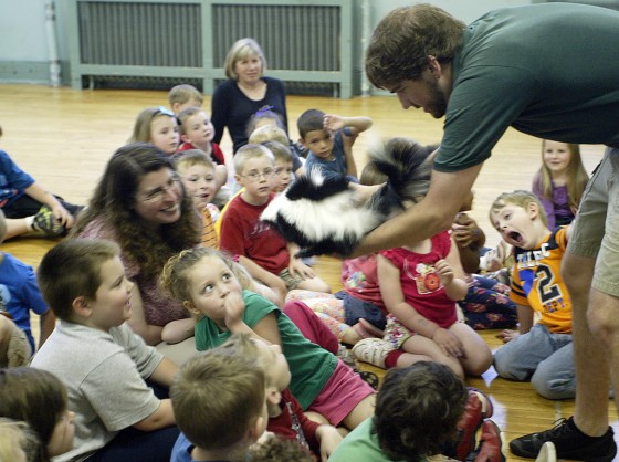 Naturalist  Patrick Miller, right, shows students the skunk he brought to the school during a visit from Zoo America to Lycoming Nursery School in Williamsport on Wednesday. The visit also featued a Barred Owl, a snake and an alligator.